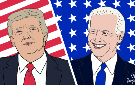 Joe Biden vs. Donald Trump, Who Are Our Presidential Candidates?